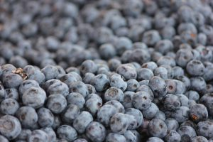 blueberry-410655_640